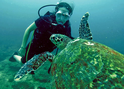 Lauren Valenti diving in Thailand