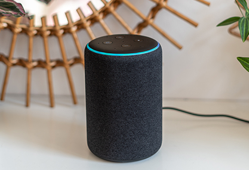 Alexa Testify