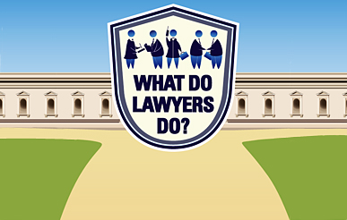 Dingus What Would Lawyers Do May 2013 - image